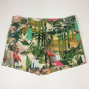 nicole by Nicole Miller Tropical Print Shorts